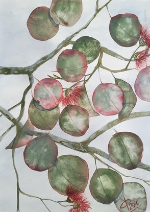 (CreativeWork) Eucalypt dream by Caroline Deeble. Watercolour Paint. Shop online at Bluethumb.