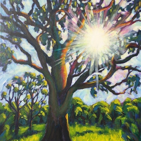 (CreativeWork) Morning Sunshine by Hetty Thompson. Acrylic Paint. Shop online at Bluethumb.
