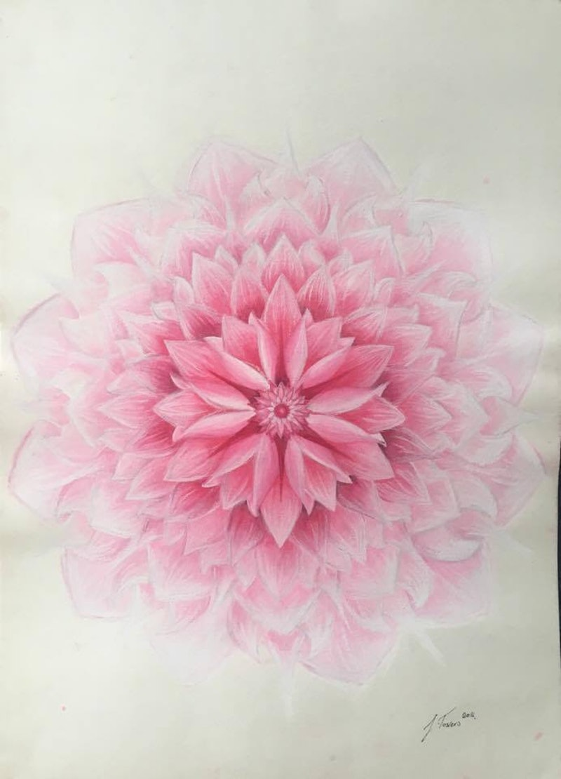 Soft Pink Lotus Flower Unframed By Jessica Towers Paintings For