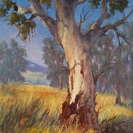 (CreativeWork) Mount Remarkable Gum by Joan Hancock. Oil Paint. Shop online at Bluethumb.