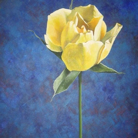 (CreativeWork) Rose by Jacqueline Briner. Acrylic Paint. Shop online at Bluethumb.