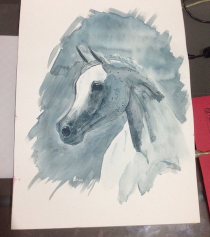 (CreativeWork) Arabian Beauty by Hayley SHAW. watercolour. Shop online at Bluethumb.
