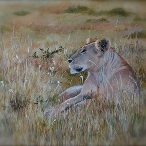 (CreativeWork) Serengeti Queen by John Barcham. oil-painting. Shop online at Bluethumb.