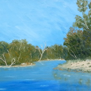 (CreativeWork) RIVER BACKWATERS.OIL PAINTING.FRAMED. by owen jones. drawing. Shop online at Bluethumb.