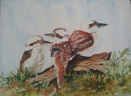 (CreativeWork) Threesome Kookaburra Trio by Marion Hughes. watercolour. Shop online at Bluethumb.