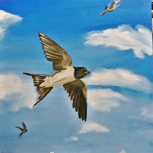 (CreativeWork) Falling Plane by Jacob Butler. oil-painting. Shop online at Bluethumb.