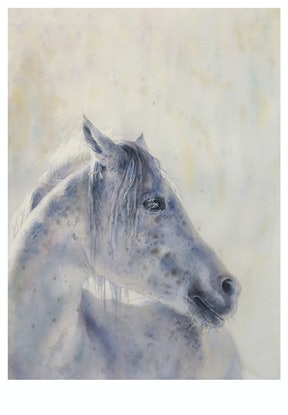 (CreativeWork) white horse by Richard(Tiejun) Chao. Watercolour Paint. Shop online at Bluethumb.