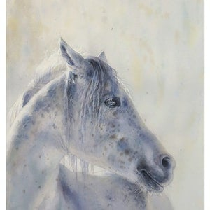 (CreativeWork) white horse by Richard(Tiejun) Chao. watercolour. Shop online at Bluethumb.