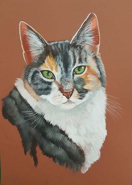 (CreativeWork) Here Kitty Kitty Kitty  by Jacky Werner. watercolour. Shop online at Bluethumb.