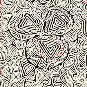 (CreativeWork) Ngapa Jukurrpa (Water Dreaming) - Mikanji, 1906/15  by Juliette Nampijinpa Brown. arcylic-painting. Shop online at Bluethumb.