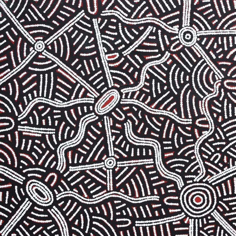 (CreativeWork) Ngapa Jukurrpa (Water Dreaming) - Pirlinyarnu, 1820/16 by Leah Nampijinpa Sampson. arcylic-painting. Shop online at Bluethumb.