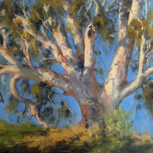 (CreativeWork) Namoi Gum by Cheryl Bruce. oil-painting. Shop online at Bluethumb.