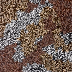 (CreativeWork) Ngapa Jukurrpa (Water Dreaming) - Puyurru 1829/16 by Shanna Napanangka Williams. arcylic-painting. Shop online at Bluethumb.