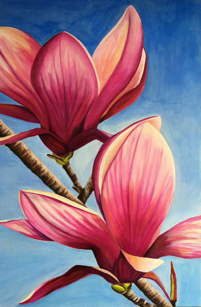 (CreativeWork) Magnificent Magnolia by Sally Delorenzo. arcylic-painting. Shop online at Bluethumb.