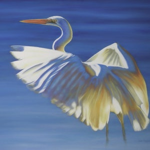 (CreativeWork) Great Egret by Renata Bruynzeel. drawing. Shop online at Bluethumb.