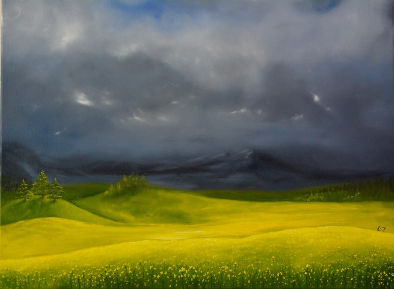 canola fields by evelyn theunissen paintings for sale bluethumb