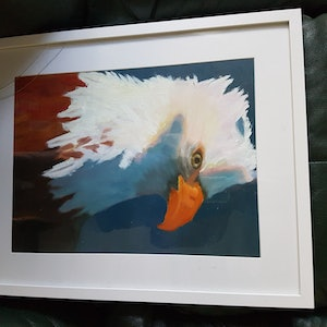 (CreativeWork) Freedom  by Cathy Stevenson. oil-painting. Shop online at Bluethumb.