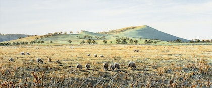(CreativeWork) Mount Anakie, Victoria by Francis McMahon. watercolour. Shop online at Bluethumb.