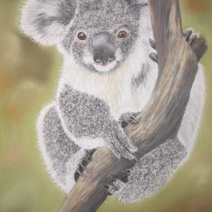 (CreativeWork) Climbing Koala by Gabriele Phillis. other-media. Shop online at Bluethumb.