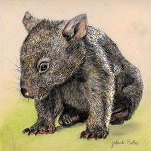 (CreativeWork) Wombat by Gabriele Phillis. other-media. Shop online at Bluethumb.