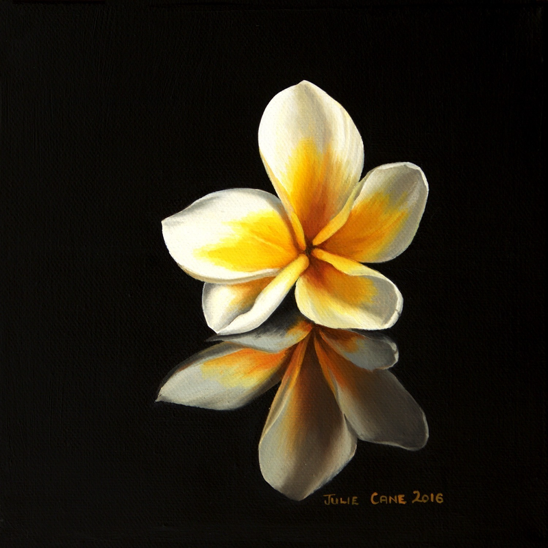 (CreativeWork) Frangipani 1 by Julie Cane. oil-painting. Shop online at Bluethumb.