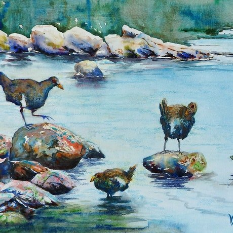 (CreativeWork) Turbos - in the Shallows by Vicki Reid. Watercolour Paint. Shop online at Bluethumb.