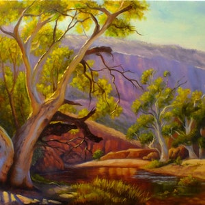 (CreativeWork) An afternoon at Ormiston Gorge, NT by Christopher Vidal. oil-painting. Shop online at Bluethumb.