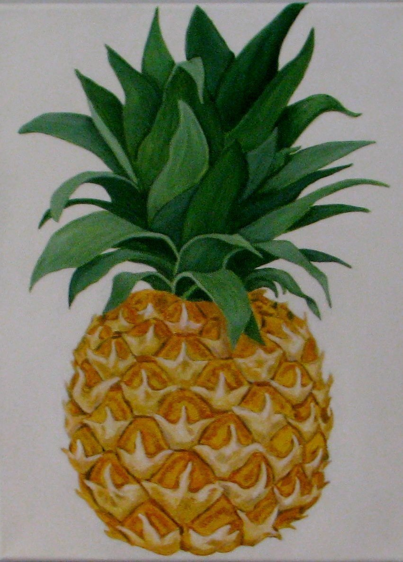 (CreativeWork) Pineapple by Julie-Anne Gatehouse. arcylic-painting. Shop online at Bluethumb.
