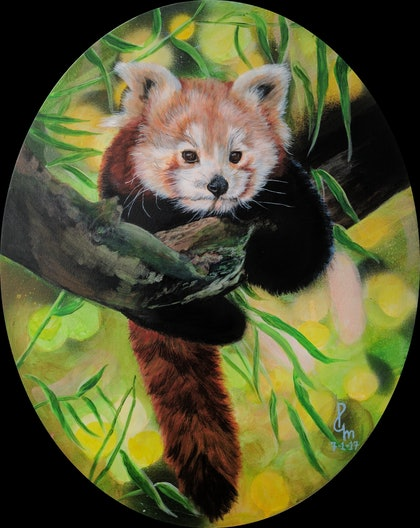 (CreativeWork) Life size Red Panda by Priya Gore. arcylic-painting. Shop online at Bluethumb.