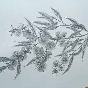 (CreativeWork) Sydney's Winter  by Sharon Mak. drawing. Shop online at Bluethumb.
