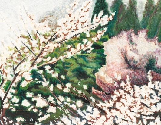 (CreativeWork) Passing by Cherry Blossoms - Limited Edition Print by Erin Nicholls. #<Filter:0x00005648ec42ca80>. Shop online at Bluethumb.