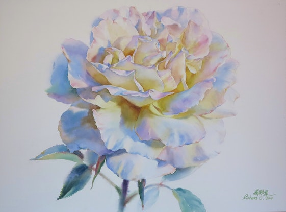 (CreativeWork) White by Richard(Tiejun) Chao. Watercolour Paint. Shop online at Bluethumb.