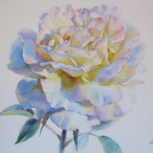 (CreativeWork) White by Richard(Tiejun) Chao. watercolour. Shop online at Bluethumb.