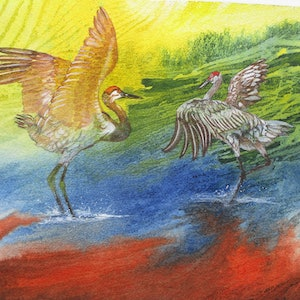 (CreativeWork) Sandhill Cranes Dance by Marty Foster. mixed-media. Shop online at Bluethumb.