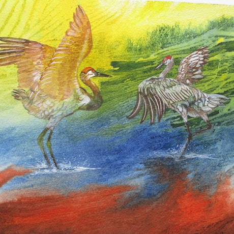 (CreativeWork) Sandhill Cranes Dance by Marty Foster. Mixed Media. Shop online at Bluethumb.