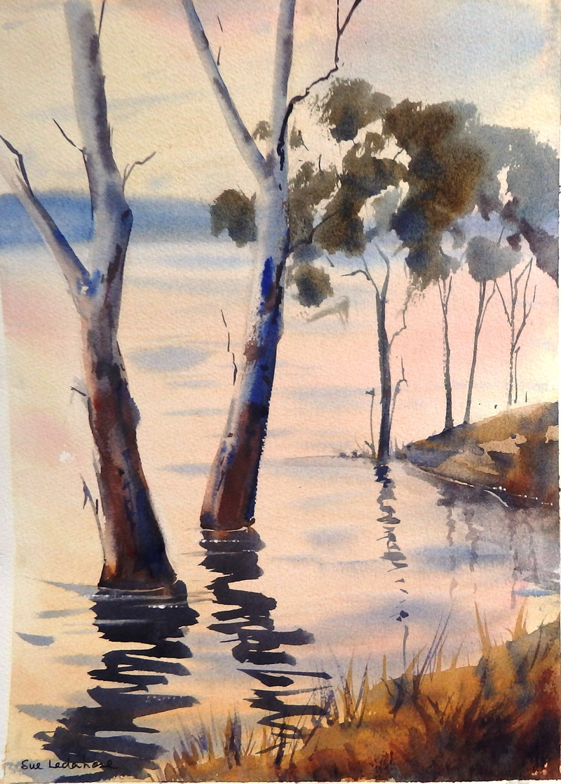 (CreativeWork) Submerged by Sue Lederhose. watercolour. Shop online at Bluethumb.