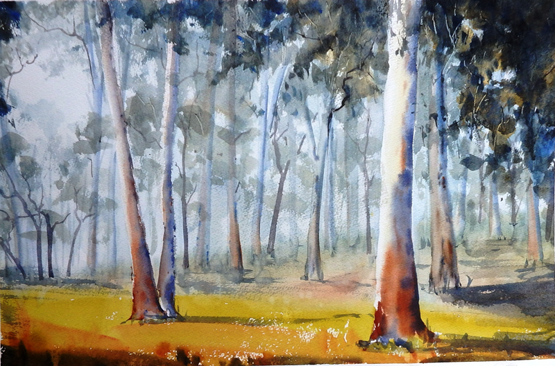 (CreativeWork) Eucalypt Forest by Sue Lederhose. watercolour. Shop online at Bluethumb.