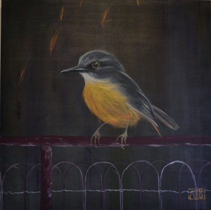 (CreativeWork) Yellow Robin sitting on Farm Gate by Angela Baldwin. arcylic-painting. Shop online at Bluethumb.