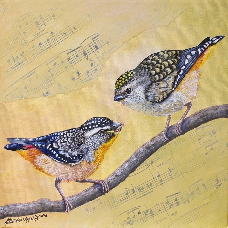 (CreativeWork) Spotted Pardalote by Katherine Appleby. mixed-media. Shop online at Bluethumb.