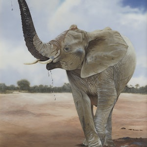 (CreativeWork) Time For Mud (African Elephant Calf) by Dario Zanesco. oil-painting. Shop online at Bluethumb.