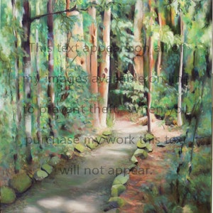 (CreativeWork) Kondalilla Falls Walking Track_Sunshine Coast Hinterland_Qld_Australia by Susan Cunningham Vibrant Expressions. other-media. Shop online at Bluethumb.