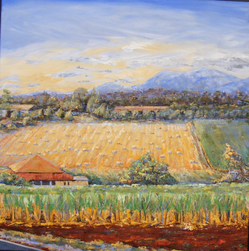 "(CreativeWork) ""Harvesting sugar cane"". by Daniela Selir. oil-painting. Shop online at Bluethumb."