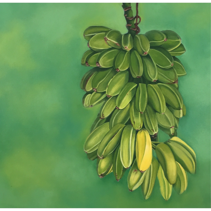 (CreativeWork) One Ripe Banana by Margaret Ingles. oil-painting. Shop online at Bluethumb.