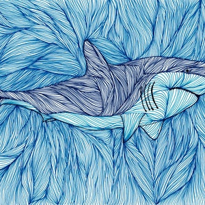 (CreativeWork) Shark Muscles by Ersu Turk. drawing. Shop online at Bluethumb.