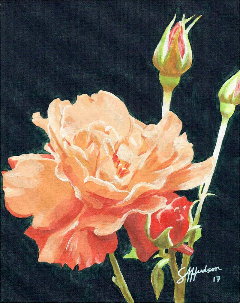(CreativeWork) Rose in Orange by Sean Hudson. oil-painting. Shop online at Bluethumb.