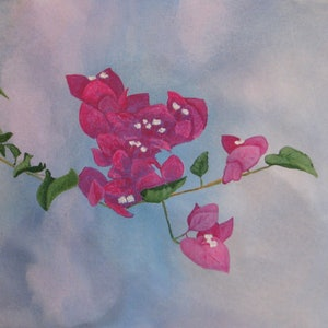 (CreativeWork) Bougainvillea by Julie-Anne Gatehouse. arcylic-painting. Shop online at Bluethumb.
