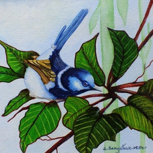 (CreativeWork) Morning Welcome  by Sandra Sengstock-Miller. watercolour. Shop online at Bluethumb.