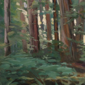(CreativeWork) Old Growth Redwoods by Debbie Giles. drawing. Shop online at Bluethumb.