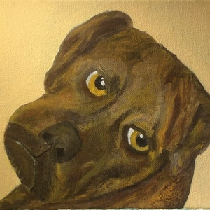 (CreativeWork) One serious dog by T Robertson. arcylic-painting. Shop online at Bluethumb.