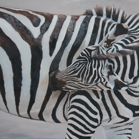 (CreativeWork) Zebra by Rob Kennedy. Oil Paint. Shop online at Bluethumb.